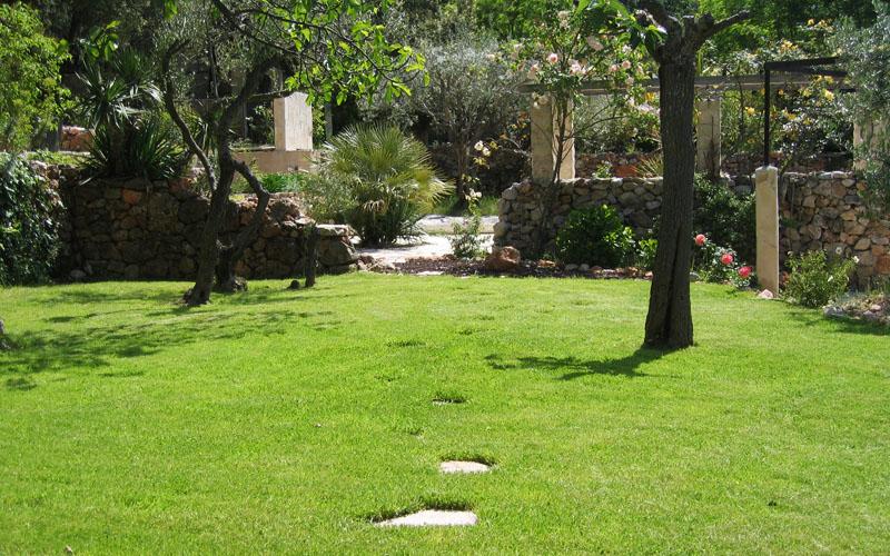 Pelouse et jardin aménagé par notre paysagiste